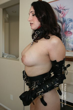 amateur photo Straps and Buckles Galore