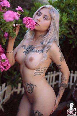 amateur photo Queendrachen