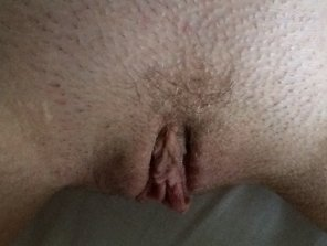 amateur photo my wife's pussy from above