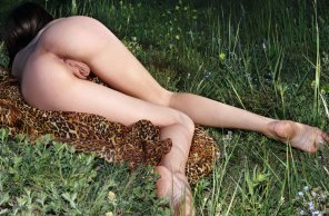 amateur photo Skinny hottie lying on a field