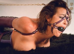 amateur photo Beautiful Harness Gag