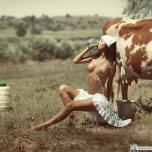 amateur photo Got Milk?