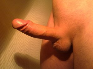 amateur photo My Dick