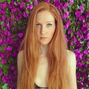 amateur photo Dahlia