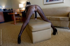 amateur photo Blonde Milf in Bodystockings
