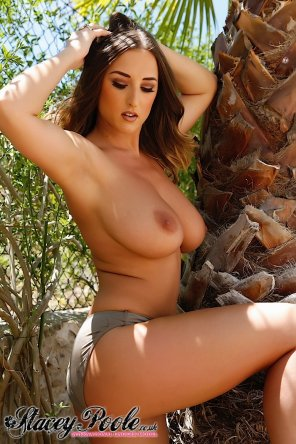 amateur photo Stacey Poole: palm tree and boobs