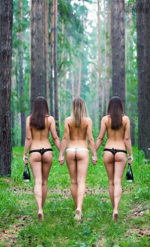 amateur photo 3 asses + 2 wine bottles + 1 forest =