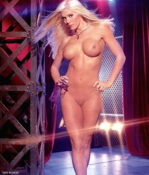 amateur photo Torrie Wilson full frontal