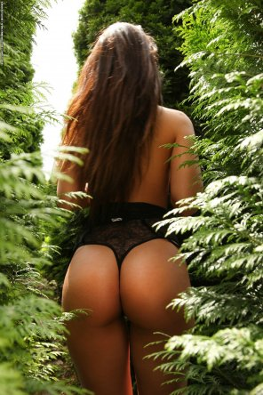 amateur photo Ass in the bushes