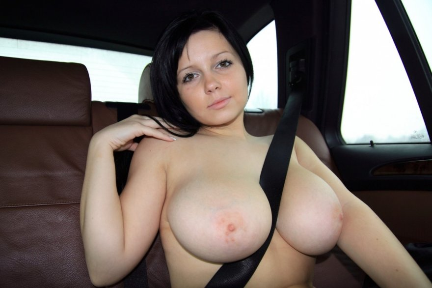 In the backseat Porn Photo