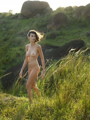 amateur photo Wild and free