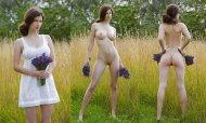 amateur photo Picking purple flowers in a field