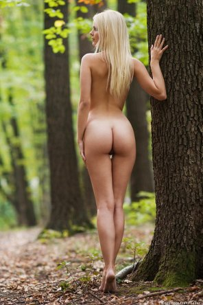 amateur photo Blonde against the bark