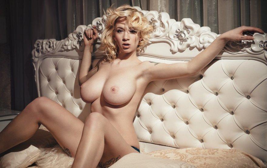 Elegant Porn Photo