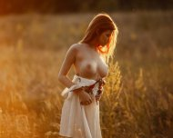 Amber evening