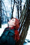 amateur photo Red in the snow