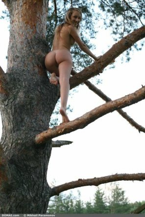 amateur photo Tree-hugger caught climbing naked