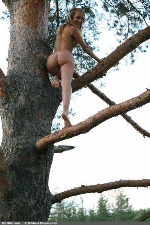 amateur photo Tree-hugger caught climbing naked