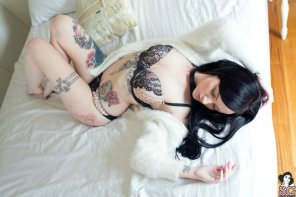 amateur photo Vorpal Suicide