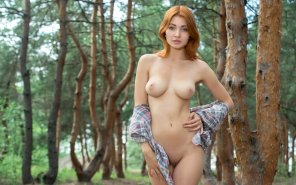 amateur photo Fantastic in the forest