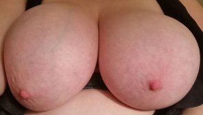 amateur photo IMAGE[Image] How fuckable are my tits?