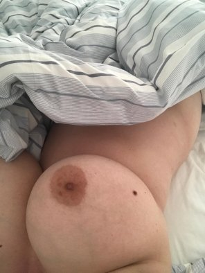 amateur photo IMAGEMy boobs in bed [image]