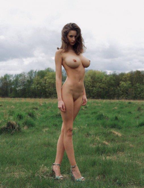 Majestic Porn Photo