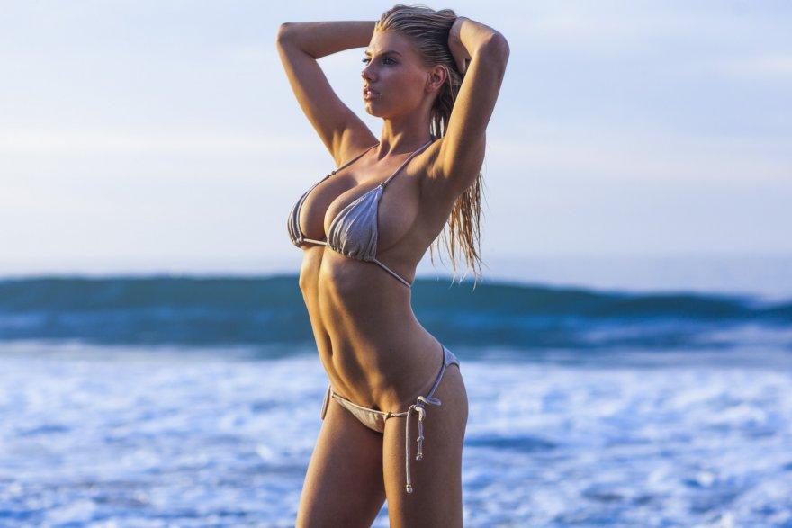 Another shot of Charlotte McKinney in her skimpy silver bikini Porn Photo
