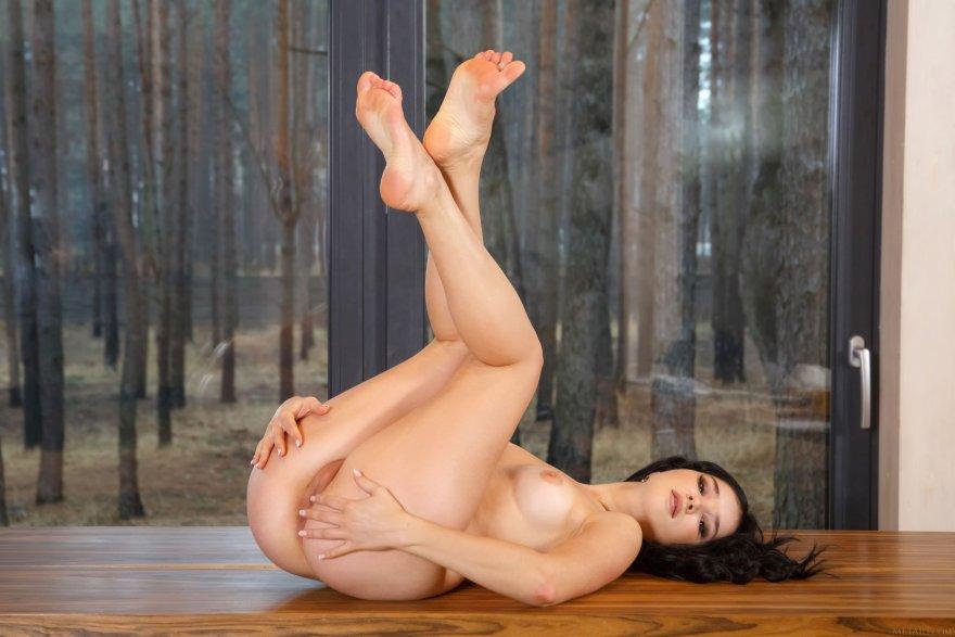 Malena Porn Photo