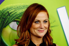 amateur photo Amy Poehler