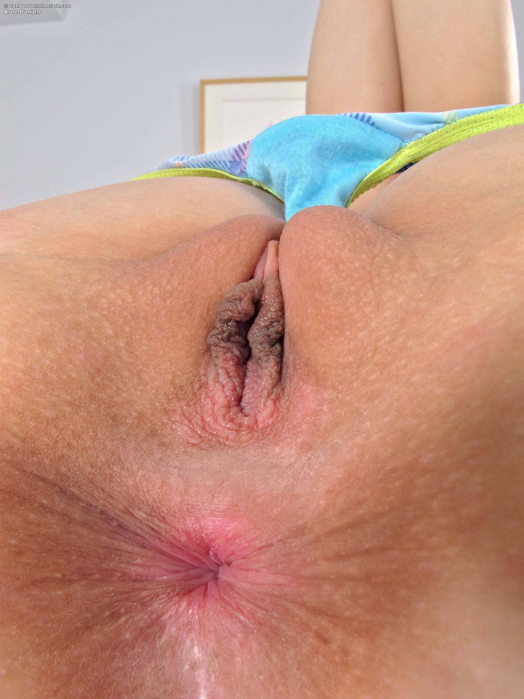Close Up Ass Pics