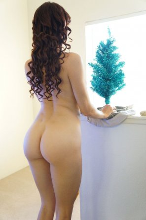 amateur photo Just put up her tree