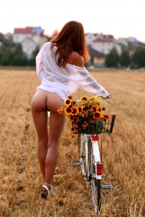 amateur photo Bike, flowers and a beautiful gap!