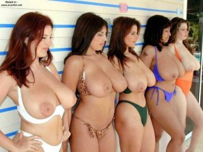 amateur photo A Busty Lineup