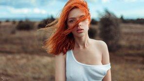 amateur photo Wind swept