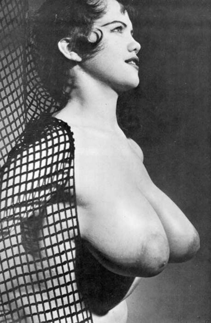 Vintage Puffies Porn Photo