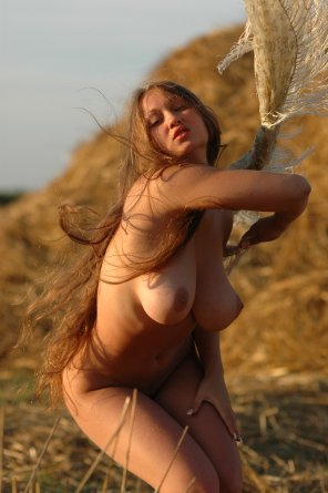 amateur photo Working in the fields