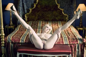 amateur photo Milky White