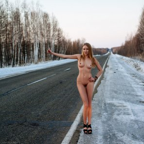 amateur photo Would you stop for her?