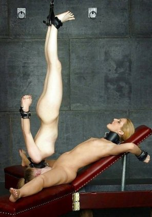amateur photo restraints & suspension