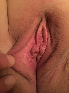 amateur photo Wife's pussy again what are the thoughts about this one bull ready?
