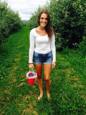 amateur photo Blueberry picking.