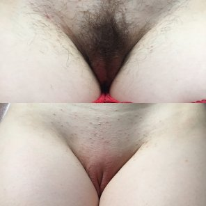 amateur photo A different kind of on/of[f] for you, which do you prefer?