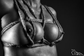 amateur photo boobs shibari