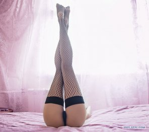 amateur photo Fishnet Legs To The Sky
