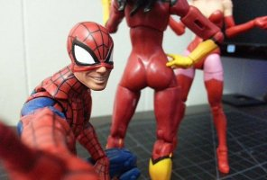 amateur photo Spidey Senses Tingling