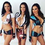 amateur photo Football fans