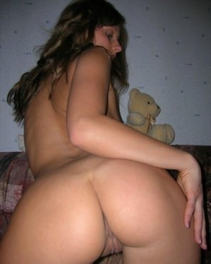 amateur photo nice teddy bear