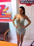 amateur photo Ninel Conde - Silver sequin minidress