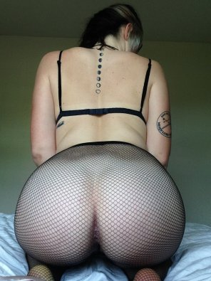amateur photo fish nets